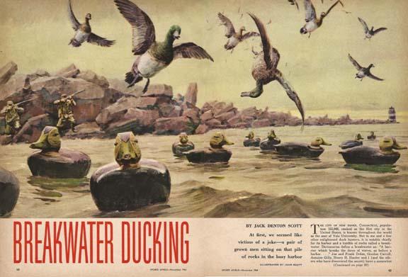 SA64Nov-Ducking